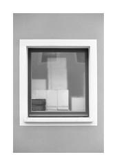 (Dennis Schnieber) Tags: 35mm kleinbild analog film monochrome pirna sachsen