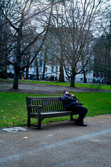 hello, it's me...Green Park, London, 2017 (sabinbro) Tags: colour streetphotography people park london man bench sony a7rii minolta 50mm md 3570 f28