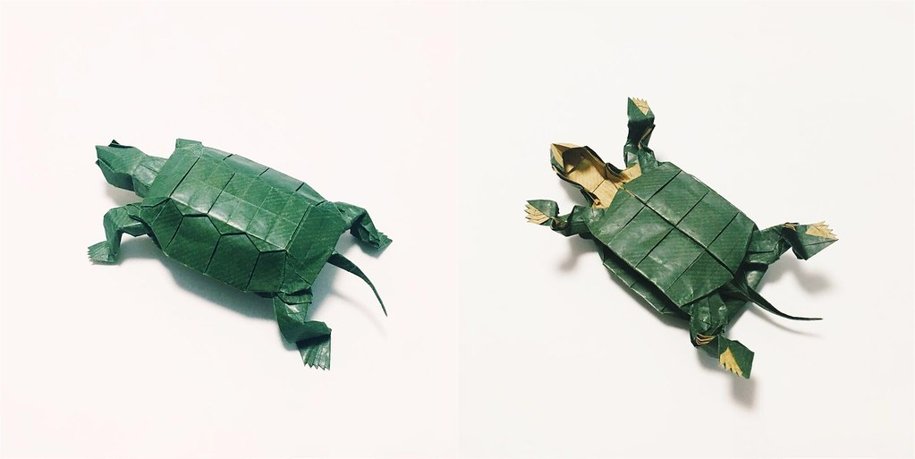The Worlds Best Photos Of Origami And Turtle Flickr Hive Mind