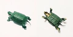 Turtle (sakuryuu) Tags: turtle origami