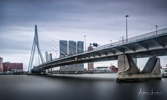 View On Rotterdam IV (Alec Lux) Tags: rotterdam architecture atmosphere bridge building canal city cityscape erasmus holland longexposure netherlands nhow skyscraper structure urban water