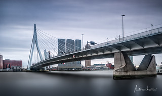 View On Rotterdam IV