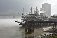Steamer in the mist (Tim Little) Tags: mississippi paddle steamer riverboat neworleans december 2017 river boat usa america
