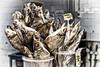 Still Life - You take my breath away (Walter Horstmann-Cholibois) Tags: riga lettland fisch fish dörrfisch latvija baltische staaten balten