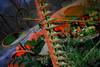 Red-Green Tractor (Notley Hawkins) Tags: httpwwwnotleyhawkinscom notleyhawkinsphotography notley notleyhawkins 10thavenue lightpainting trees fall outdoors 2017 november night nocturne evening light bucolic ruralfarm missouri farm missouriphotography ruralphotography midwest ruralusa 光绘 光繪 lichtmalerei pinturadeluz ライトペインティング प्रकाशपेंटिंग tractor shadows