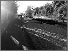 Black and White Canal Walk (alanhitchcock49) Tags: birmingham and worcester canal tardebigge worcestershire near redditch vromsgrove just walking in nature black white mono