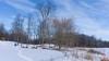Tables de pique-nique, Parc du Lac Beauchamp en Hiver, Gatineau, Canada - 4204 (rivai56) Tags: arbuste parcdulacbeauchampenhiver gatineau canada québec ca winter sonyphotographing neige snow