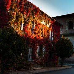 Couleurs d'automne (Meculda) Tags: feuille automne autumn france nikon exterieur journe village