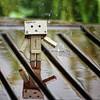danbo in rain (bauingenieuse) Tags: danbo bauingenieuse 2017 regen rain 60d canon danbolove puppe doll urlaub südafrika south africa stellenbosch tisch spiegelung refexion spieglung pfütze tropfen drops drop thunderstorm