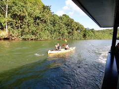 Wailua River State Park - Fern Grotto (83) (pensivelaw1) Tags: hawaii kauai wailuariverstatepark ferngrotto