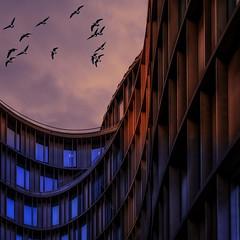 Axel Towers (ibjfoto) Tags: axeltowers bluehour blåtime by city cityscape copenhagen danmark denmark ibjensen ibjfoto københavn urban urbanlandscapes aften evening