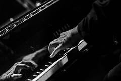 Chano DOMÍNGUEZ - Piano - 4 hands... | 180105-1920-jikatu (jikatu) Tags: 100mm canon canonmk4 festivaldejazz jikatu puntadeeste yobino zeiss departamentodemaldonado uruguay uy zeissmakroplanart2100 ze makroplanar makroplanart2100 people jazz piano jazzhandcuration published