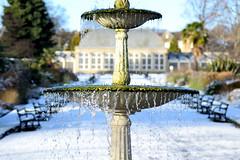 DSC_0749_00015 (pariscross) Tags: snow nature botanical gardens sheffield britain architecture greenhouse building fountain macro