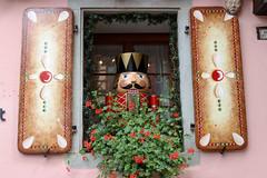 Vacances_0288 (Joanbrebo) Tags: alsace hautrhin riquewihr grandest francia fr canoneos80d eosd efs1855mmf3556isstm autofocus finestra ventana window