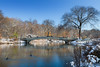 Late Fall, Early Snow (Ben-ah) Tags: bowbridge centralpark manhattan newyorkcity ny lake duck snow fall autumn winter castiron urns calvertvaux jacobwreymould