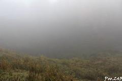Butte de Vauquois (Poo.243) Tags: butte vauquois meuse ardennes 1914 1918 wwi premiere guerre mondiale mines erste weltkrieg france grand est lorraine memoire champs bataille tranchées trench graben brume brouillard fog