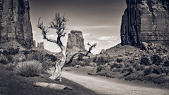 In the Valley - monochrome (Eduard Moldoveanu Photography) Tags: america canyon desert monumentvalley national nationalparks navajo park sand usa utah amazing arizona buttes famous formation indian land landscape mesa mitten mittens monument nature ontheroad parks red remote reservation rock scene southwest spiritual stone tourism travel tribal valley west western wild