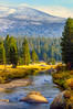 Golden Hours at Tuolumne Meadows (Yaecker Photography) Tags: yosemitenationalpark mountains trees sunset sunrisesunset sun river riverbank riverrocks wildriver mercedriver tree goldenhour golden mountain sierranevada sierra highsierra easternsierra water waterporn