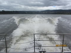 The wake of our boat on the River Tamar, Tasmania (d.kevan) Tags: boats rivers rivertamar tasmania rivertamarcruises onboardboat riverbanks trees buikdings wakes