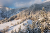 Happy New Year!!:-) (pietkagab) Tags: serbia mountains mokragora winter evening afternoon light zlatibor landscape snow trees forest balkan balkans serbian pietkagab photography pentax piotrgaborek pentaxk5ii travel trip tourism trekking trek hike hiking highlands adventure
