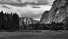 Layers and Steps in an Image (Black & White, Yosemite National Park) (thor_mark ) Tags: nikond800e lookingsw day6 triptopasoroblesandyosemite yosemitenationalpark capturenx2edited colorefexpro blackwhite silverefexpro2 pacificranges sierranevada yosemiterittersierranevada centralyosemitesierra yosemitevalley outside trees hillsideoftrees overcastwithclouds grassymeadow mountains mountainsindistance mountainsoffindistance evergreens landscape nature cookõsmeadow mountainside threebrothersmountainside highercathedralrocks middlecathedralrocks lowercathedralrocks cathedralrocks highercathedralspires lowercathedralspires spiresgully cathedralchimney portfolio project365 california unitedstates cook'smeadow