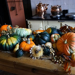 Autumnal harvest in the kitchens at Felbrigg Hall thumbnail