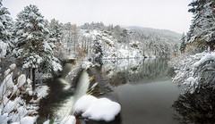 Nieve en la presa. (jetepe72) Tags: nieve sierra presa agua invierno campo paisaje landscape pinos rascafria pradillo madrid
