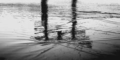 miyajima torii, japan 0332 (s.alt) Tags: thegreattorii torii miyajima 宮島 厳島 itsukushima shrineisland shrine island hiroshimabay hiroshimaprefecture japan autumn structure texture unescoworldheritagesite unesco worldheritagesite hightide tide floatingtorii gate floating toriigate japansthreebestviews scenicplace scenic nihonsankei sacredisland sacred gianttorii keepevilspiritsaway nationaltreasure camphortree 60tons sea blackwhite blackandwhite monochrome bw schwarzweiss sw bwphotography bnwphotography blacknwhite black noir noire monochrom minimalismus bbs beautyofsilhouettesandshadows minimal minimalism silhouette reflection