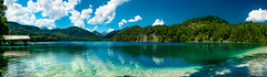 Alpsee Panorama (McMac70) Tags: beach green jahreszeiten landschaft natur nature outdoor pflanze plant reflection sommer spiegelung tree wasser blue boat cloud cumulus daytime forest lake land landscape mountscenery mountain naturereserve noperson outdoors scenic sky summer travel turquoise water waterresources watercourse weather