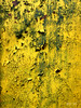 Yellow Paint (David Thibodeaux) Tags: abstractexpressionism abstractreality brutalism brutalistart deconstruction minimalism objetstrouves paintwithlight wabisabi zenandtheartofphotoshop color composition luminosity texture texturelib yellow rust davidthibodeaux
