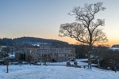 Dusk at Lyme Hall (Maria-H) Tags: stockportdistrict england unitedkingdom gb snow winter dusk disley cheshire uk olympus omdem1markii panasonic 1235