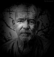 larmes de désespoir (JDS Fine Art Photography) Tags: bw monochrome tears despair emotion alone anguish grief sadness touching humanity heartbreak cinematic loneliness hopeless humanemotion