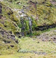 2017 12 31_6353b.jpg (robertpeckyno) Tags: tongariro newzealand volcano mountdoom tongarirocrossing ngauruhoe