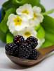 DSC_0112 (StefGCarter) Tags: blackberry blackberries stilllife