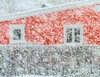 Red House in the Snow (Karen_Chappell) Tags: red house fence snow snowing storm weather winter december stjohns windows quidividi home snowstorm white canada atlanticcanada avalonpeninsula eastcoast newfoundland nfld