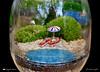 LIBERTA'.......CONDIZZIONATA (Salvatore Lo Faro) Tags: boccia barattolo vetrocontenitore rosso azzurro verde sdraio ombrellone pietre ciotoli alberi riflessi salvatore lofaro nikon7200 orticola milano lombardia italia italy
