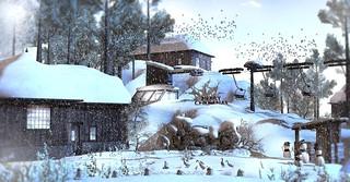 Catch a winter break