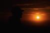 Son & Sun (Sarah Fraser63) Tags: sunset otago westcoastnz newzealand silhouettes colour sun gold orange sky nature