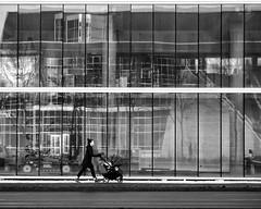 Pieces of the future (George Stastny. Photographer.) Tags: street streetphotography streets reflection lines getolympus olympus omd em1 edmonton alberta canada 45mm mzuiko monochrome blackandwhite bnw bw