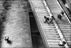 Harpa Concert Hall Reykjavik (Stefan Bock) Tags: iceland longexposure langzeitbelichtung island indoor harpa harpaconcerthall reykjavik blackandwhite schwarzweiss people architecture movement motion bewegung menschen street architektur