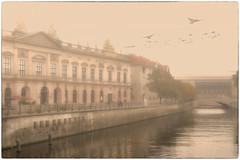 German Historical Museum, Zeughaus (Heinze Detlef) Tags: berlin zeughaus museum german wasser nebel tauben architektur gebäude