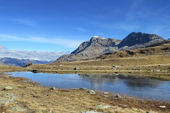 Lejin S-chaglia, 9.10.17 (ritsch48) Tags: engadin graubünden sils lejinschaglia