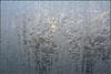 Eisblumen, zur Zeit Produktionsstopp (julia_HalleFotoFan) Tags: winter eisblumen
