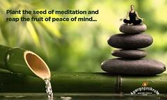 #Yoga and #Meditation: the most effective ways to find peace... #ayuryogashram #ayurvedictreatmentinkerala (ayuryogashram) Tags: ayurvedic treatment kerala ayurveda treatments best centre centres famous wellness center centers massage rejuvenation retreat