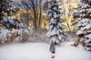 Frosty morning (Elizabeth Sallee Bauer) Tags: 5yearold nature active child childhood chill cold coldweather colorful country fun girl kid nonurbanscene outdoors outside playing snow warmtones white windy winter wintersports