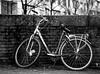 Sad bike © Inge Hoogendoorn (ingehoogendoorn) Tags: bike bikes bikeparking bikewreck bicycle bicycles dutchbikes dutchbike fiets fietsen fietswrak denhaag thehague
