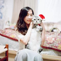 Merry Christmas (有喵的生活) Tags: mamiyac330 portra800 kodak tlr 120 6x6 square 負片 taiwan taipei portrait bokeh light 高雄 mutama me 自拍 selfportrait cat kitty animals home americanshorthair 小米
