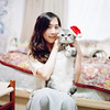 Merry Christmas (有喵的生活) Tags: mamiyac330 portra800 kodak tlr 120 6x6 square 負片 taiwan taipei portrait bokeh light 高雄 mutama me 自拍 selfportrait cat kitty animals home americanshorthair 小米
