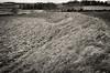 Warham camp. Iron age center (AJ Mitchell) Tags: ironage prehistoric earthworks norfolk warham hillfort highcontrast pushed winter grass tuft bank ridge iceni britishisles