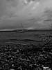 Lac Léman Switzerland (lifehopefinalproject) Tags: badge police bateaux interdiction propriété privée lac léman ponton vague bw iphone 7 filtre barrière plage suisse rolle 2017 2018 paysage art pics